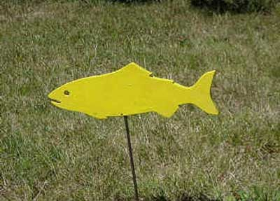 MVIHES Yellow fish for Salmon Friendly Lawn